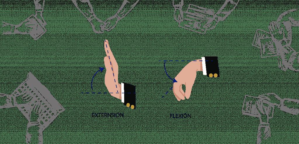 movimientos articulaciones